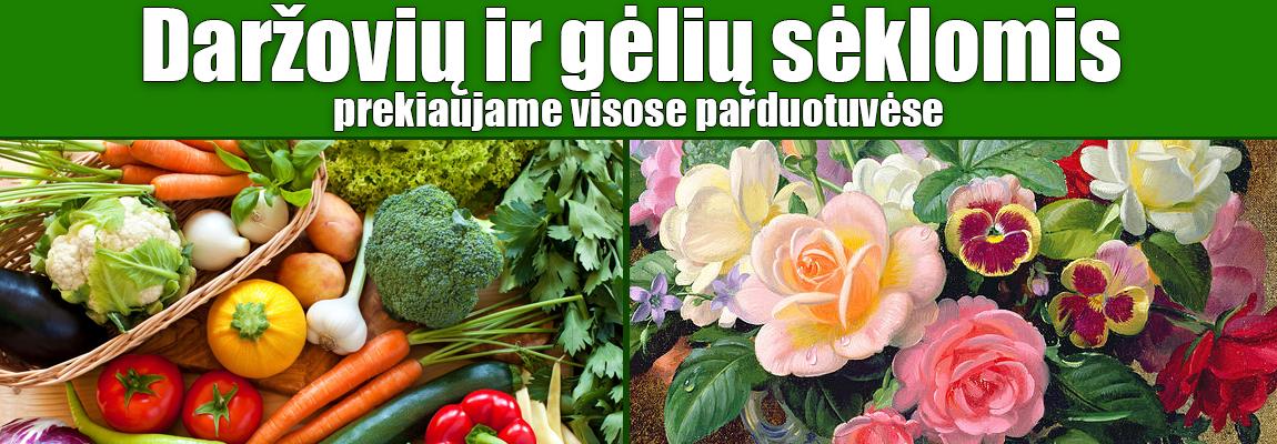 Daržovių ir gėlių sėklos